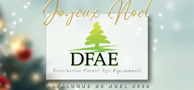 idées cadeaux noel DFAE
